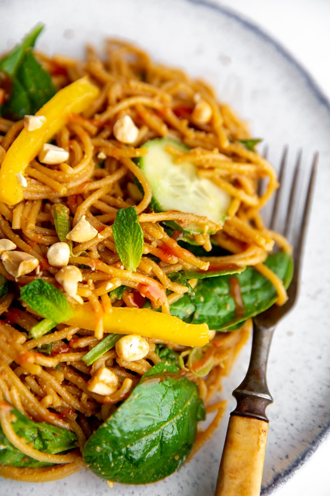 Close up of the cold Thai peanut noodle salad on a plate with a fork.